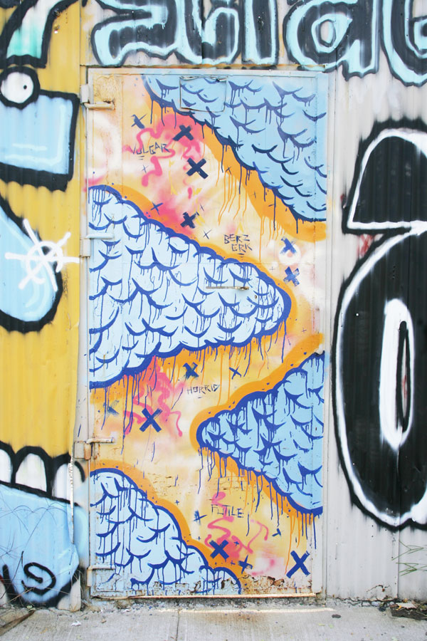 A graffiti painted metal door in Williamsburg NY.