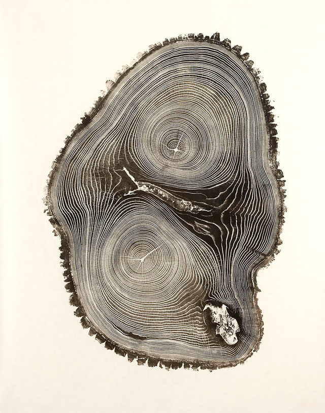 Woodcut relief art prints by American artist and sculptor Bryan Nash.