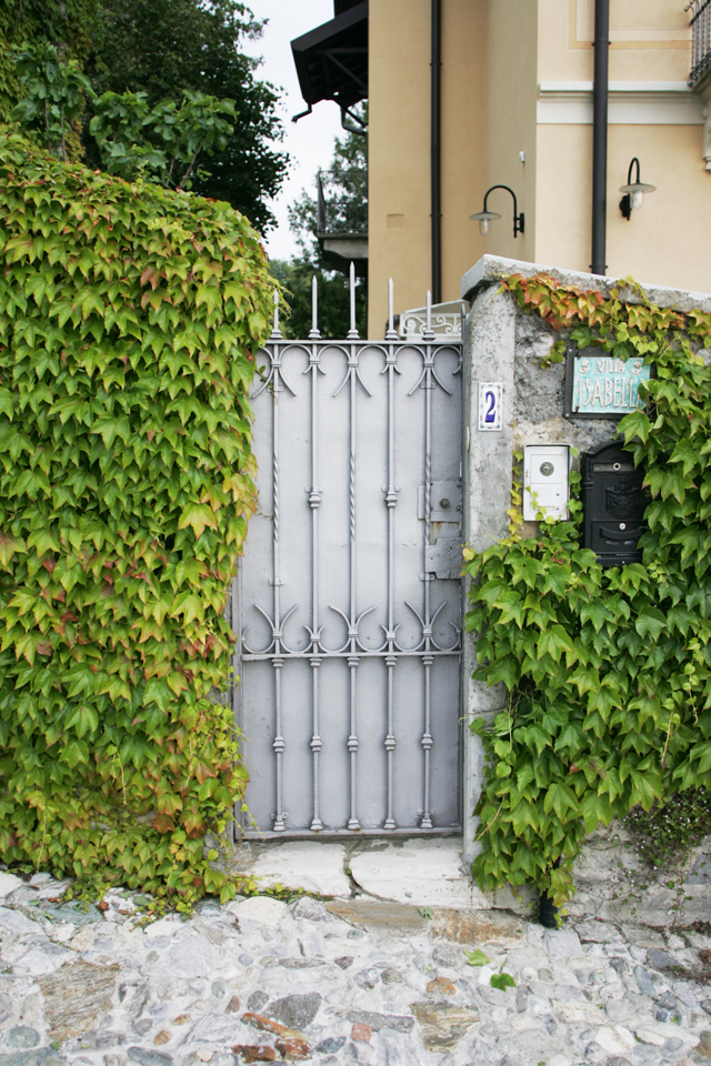 Italian painted grey garden door covered in ivy.